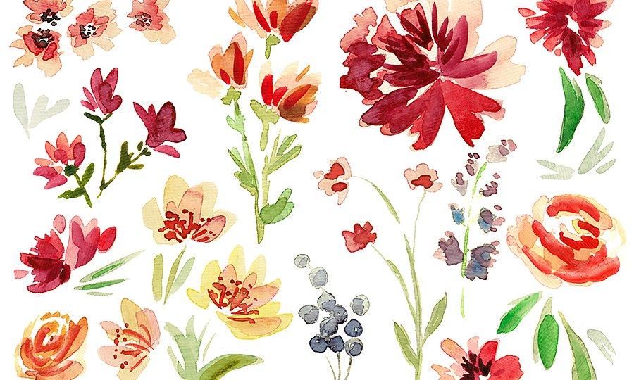 How To Draw Flowers Step By Step Adobe